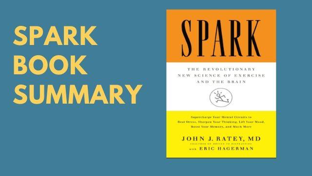 john rateys spark book summary